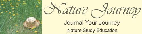 Nature Journey